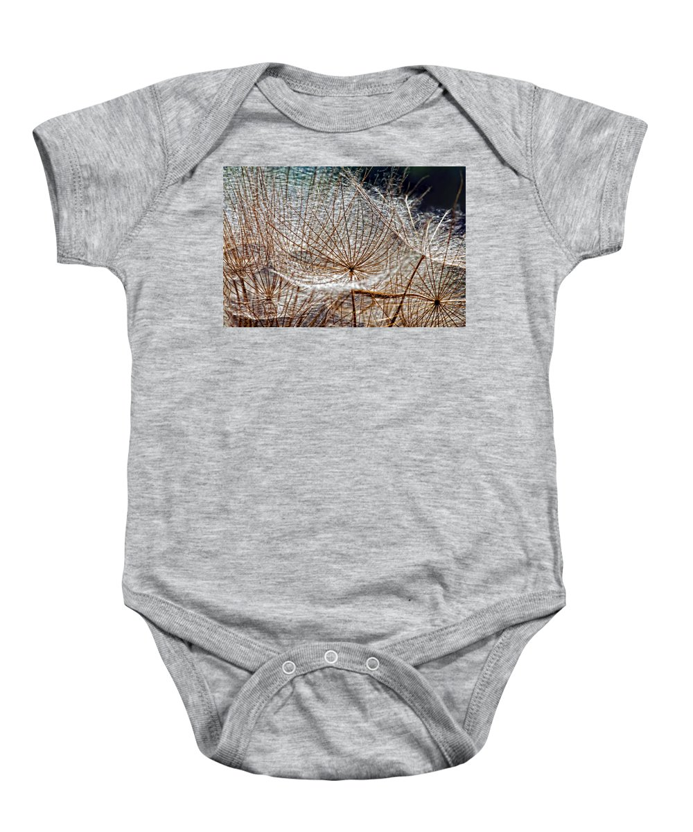 Asteraceae Baby Onesie featuring the photograph Weed Wandering by Steve Harrington