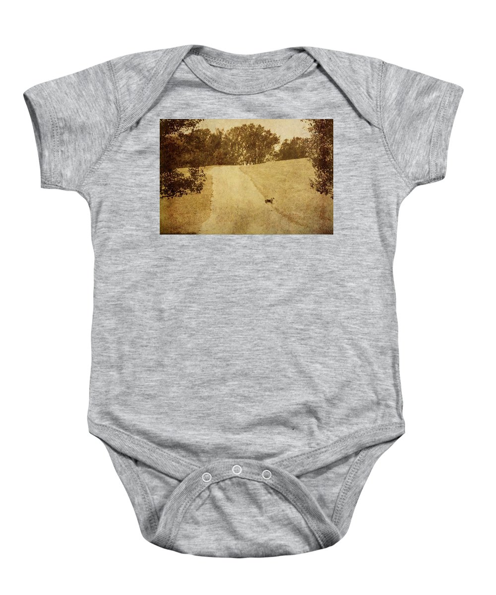 Dog Baby Onesie featuring the photograph Where's Jake by Trish Tritz