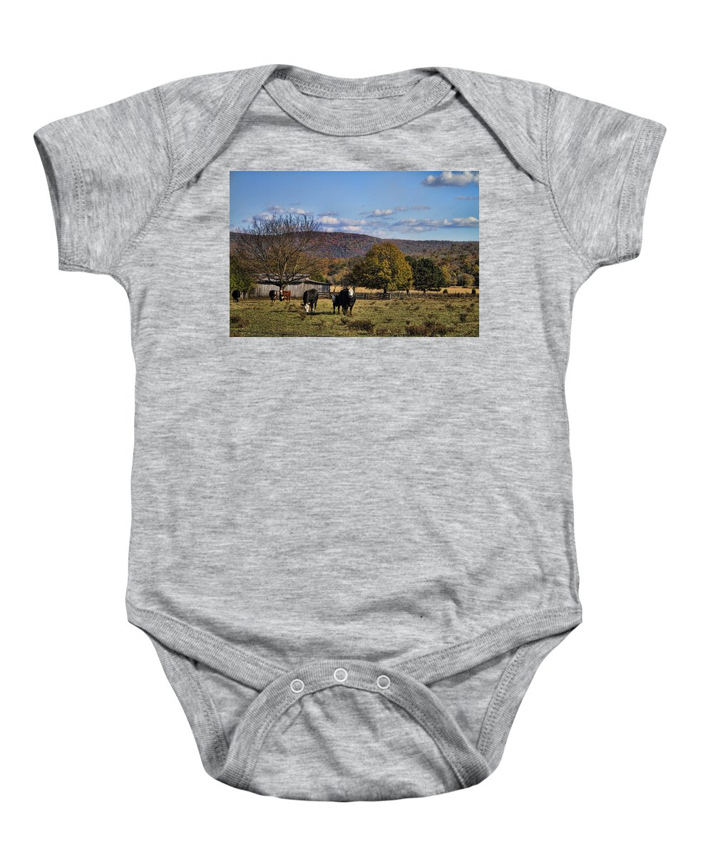 White Baby Onesie featuring the photograph White Faced Cattle In Autumn by Kathy Clark