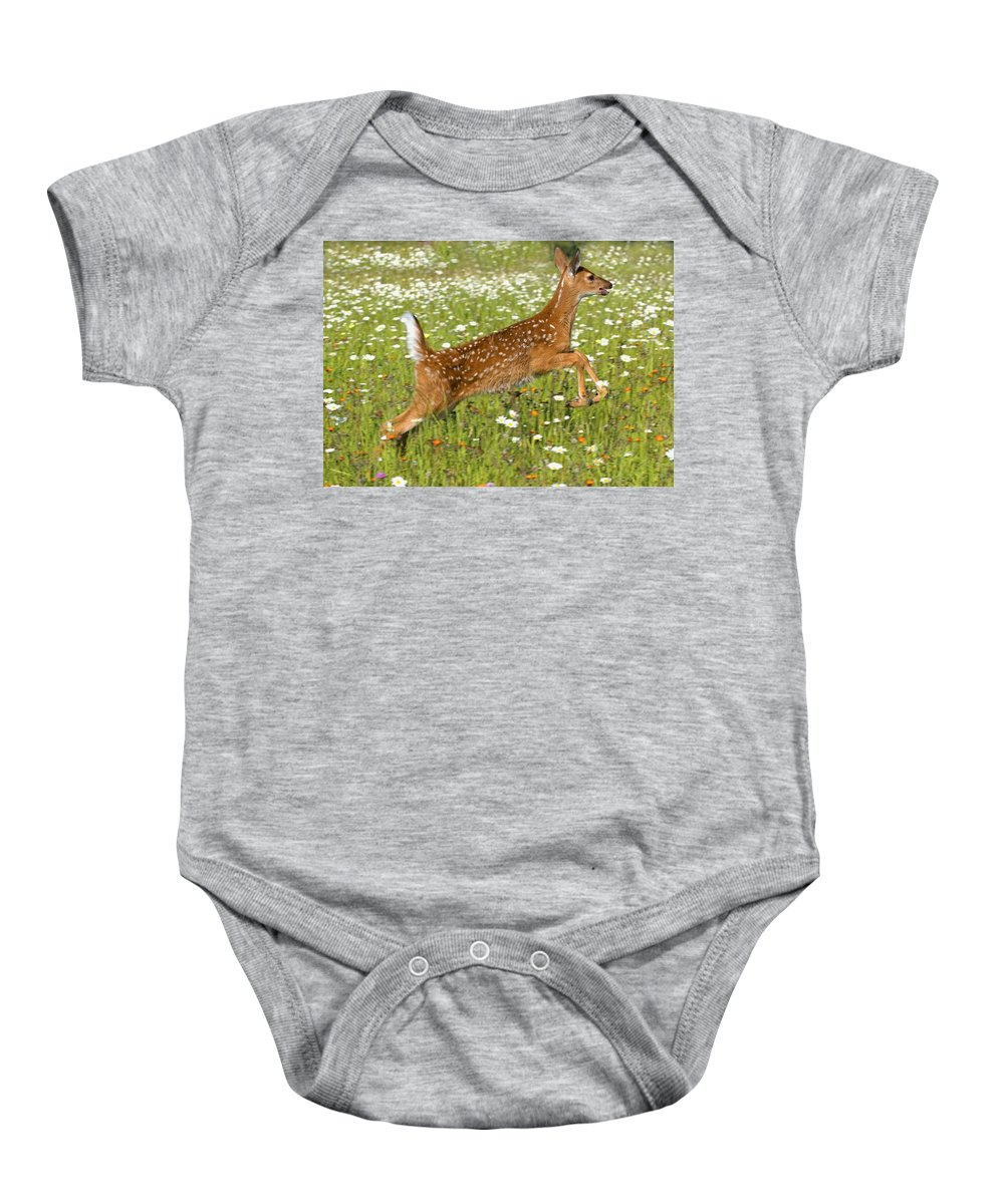 Field Baby Onesie featuring the photograph White Tailed Deer Fawn In Field Of by John Pitcher