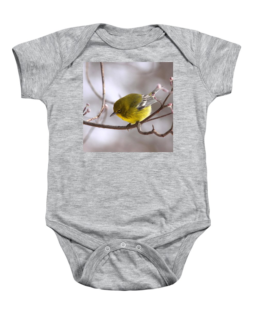 Pine Warbler Baby Onesie featuring the photograph Wingbars Of White by Travis Truelove