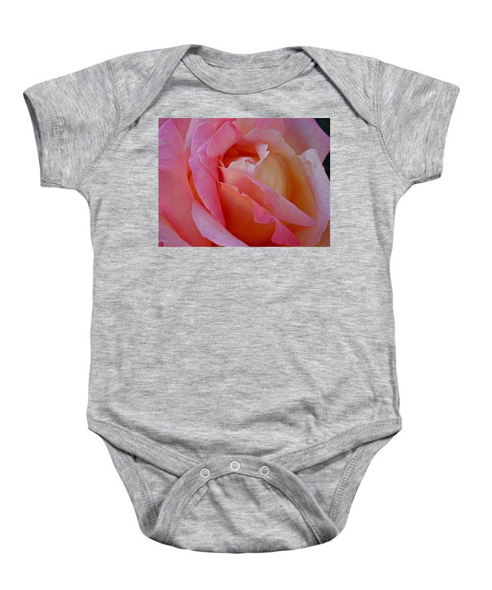 Flowers Baby Onesie featuring the photograph Winter Rose by Diana Hatcher