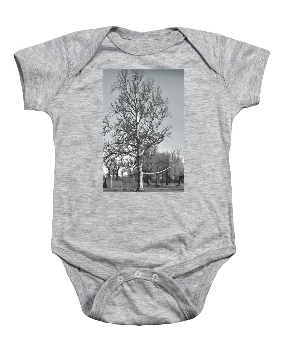 Nature Baby Onesie featuring the photograph Winter Sycamore by Debbie Portwood