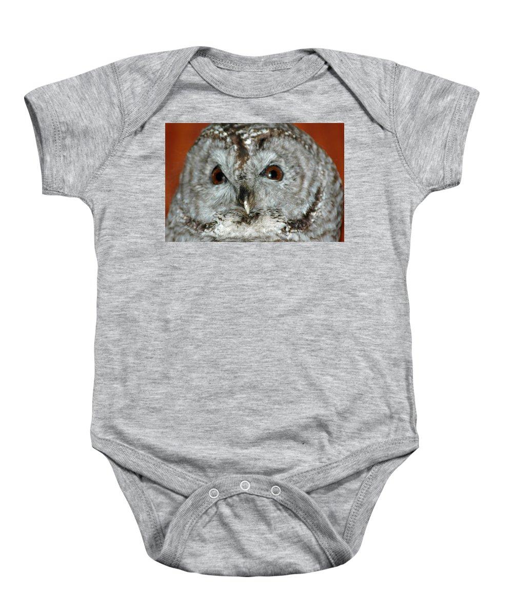 Owl Baby Onesie featuring the photograph Wise Owl by LeeAnn McLaneGoetz McLaneGoetzStudioLLCcom