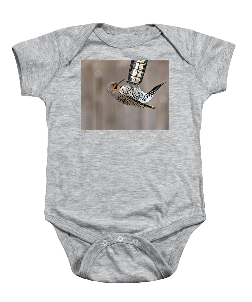 Yellow Shafted Northern Flicker Baby Onesie featuring the photograph Yellow-shafted Northern Flicker Feeding by Edward Peterson