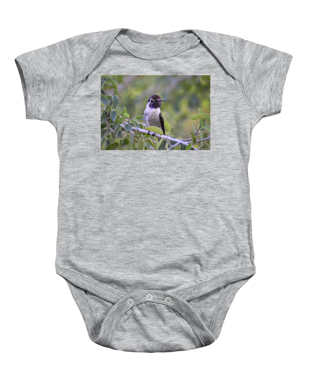 Costas Hummingbird Baby Onesie featuring the photograph You Said What by Saija Lehtonen