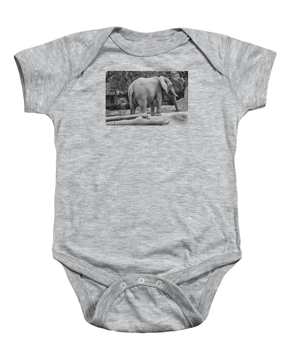 African Elephant Baby Onesie featuring the photograph African Elephant by Susan McMenamin