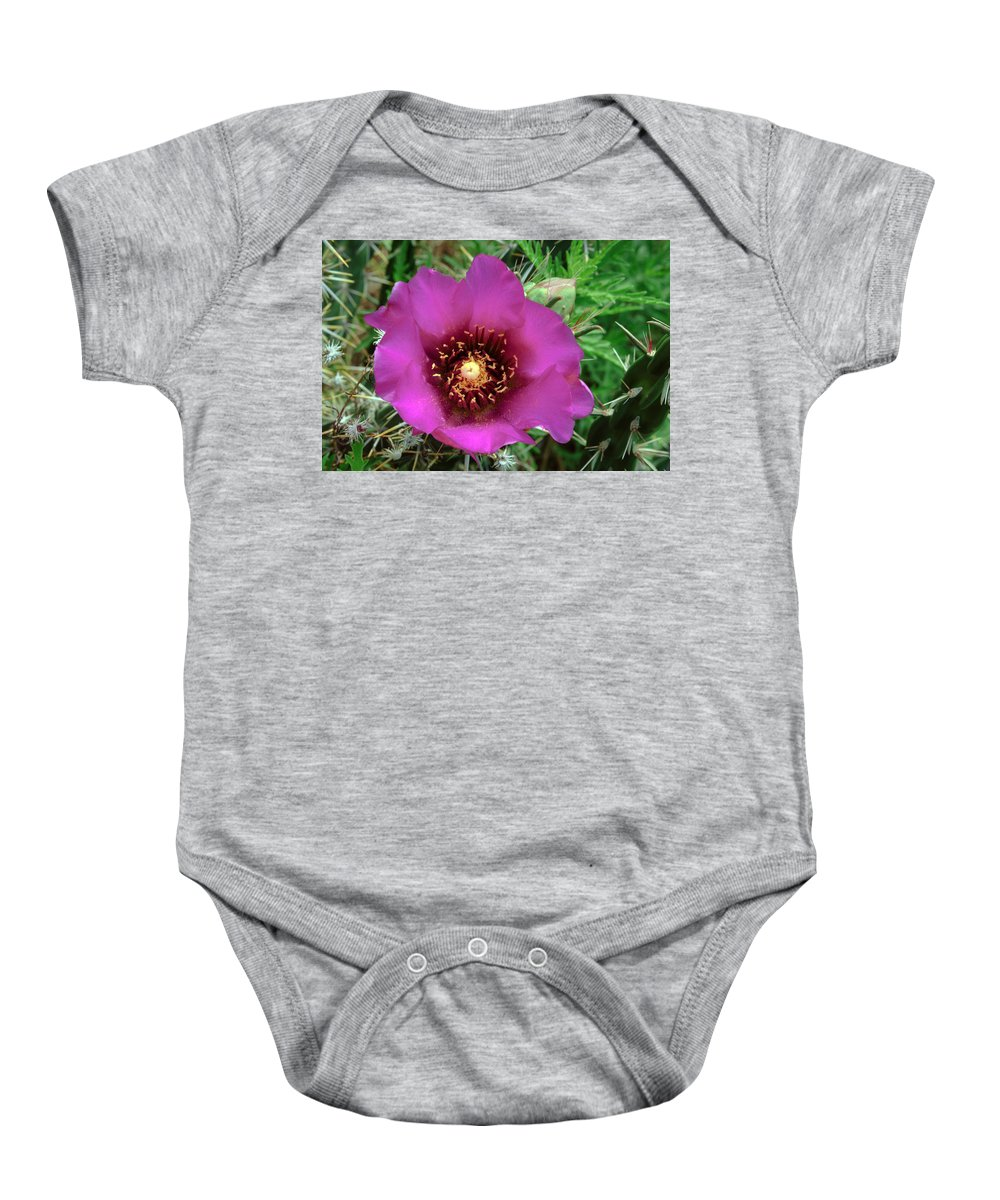 Cholla Cactus Flower Baby Onesie featuring the photograph Cholla Cactus Flower by Tikvah's Hope