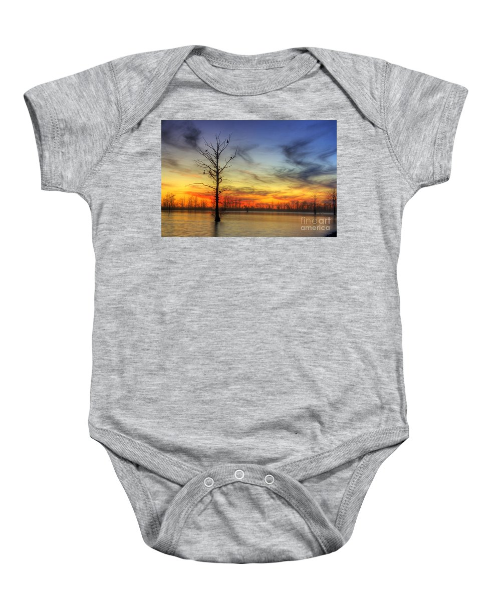 2014 Baby Onesie featuring the photograph Cormorants In A Tree by Larry Braun