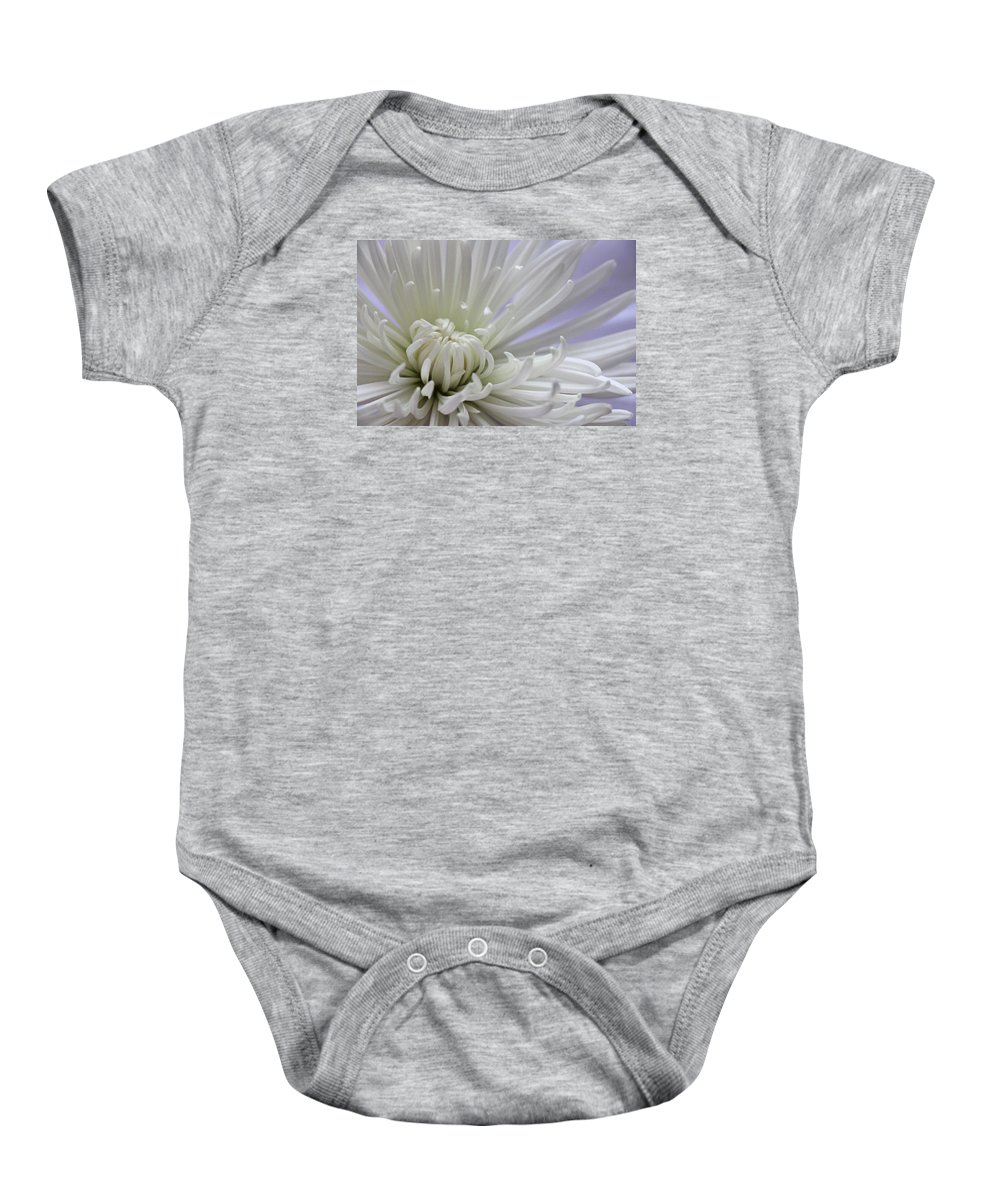 Chrysanthemum Baby Onesie featuring the photograph Fragile Beauty by Iryna Goodall