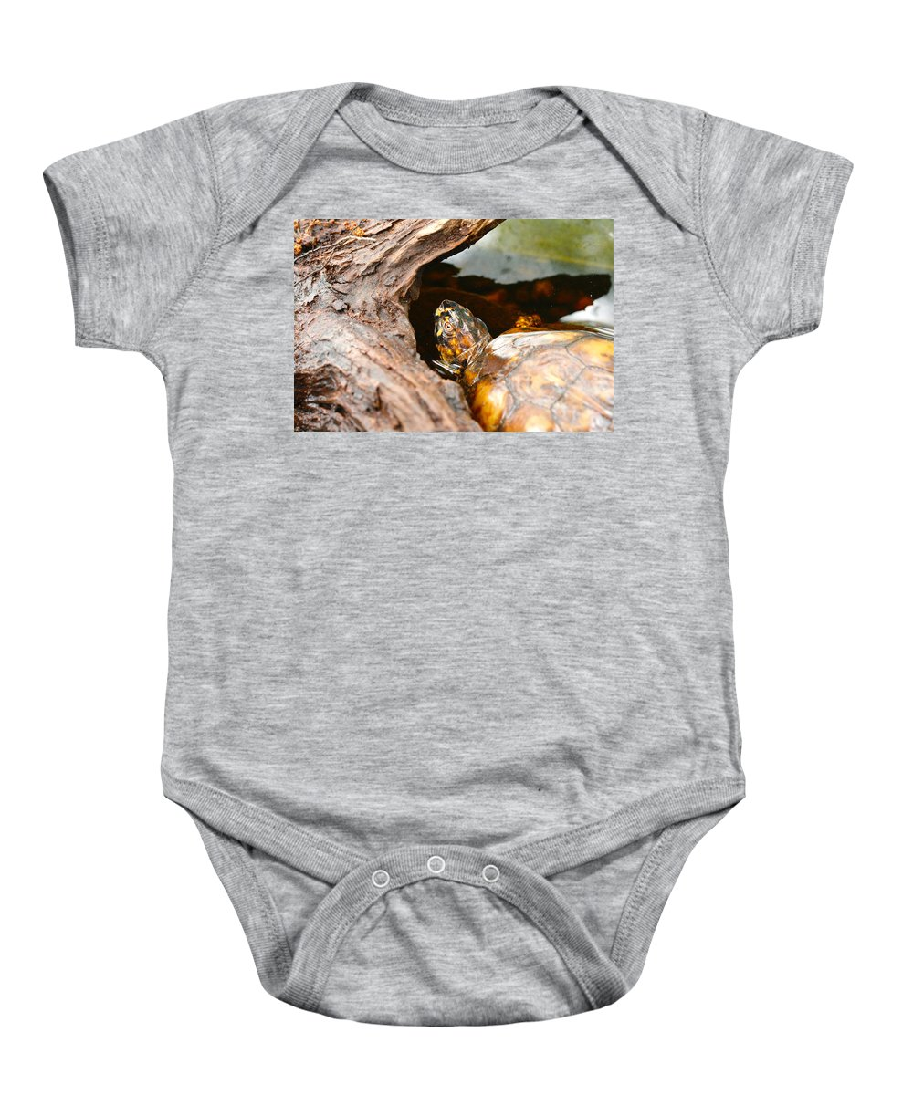 Baby Onesie featuring the photograph Turtle by Shirley Sykes Bracken