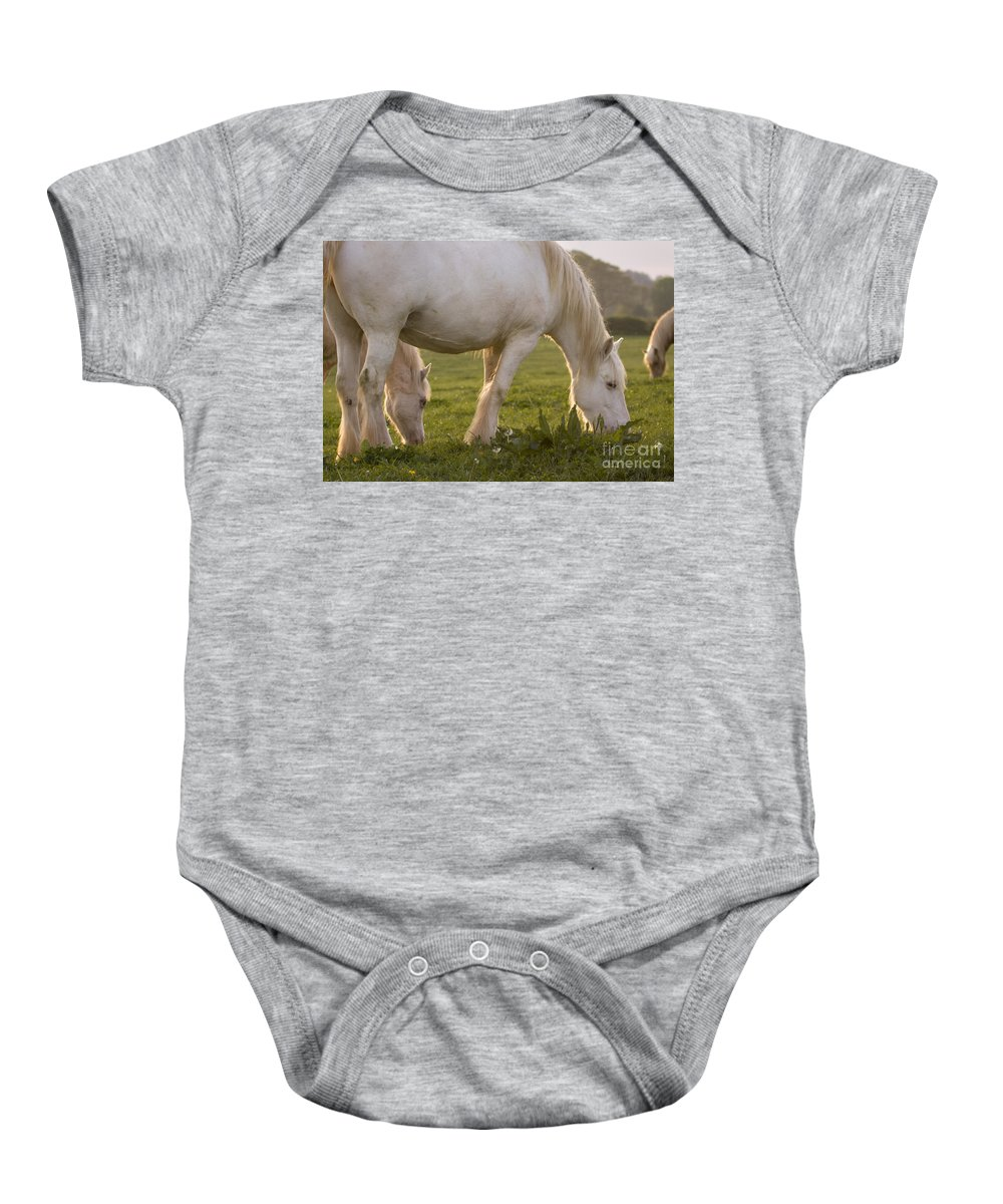 Horse Baby Onesie featuring the photograph White Horses by Angel Ciesniarska
