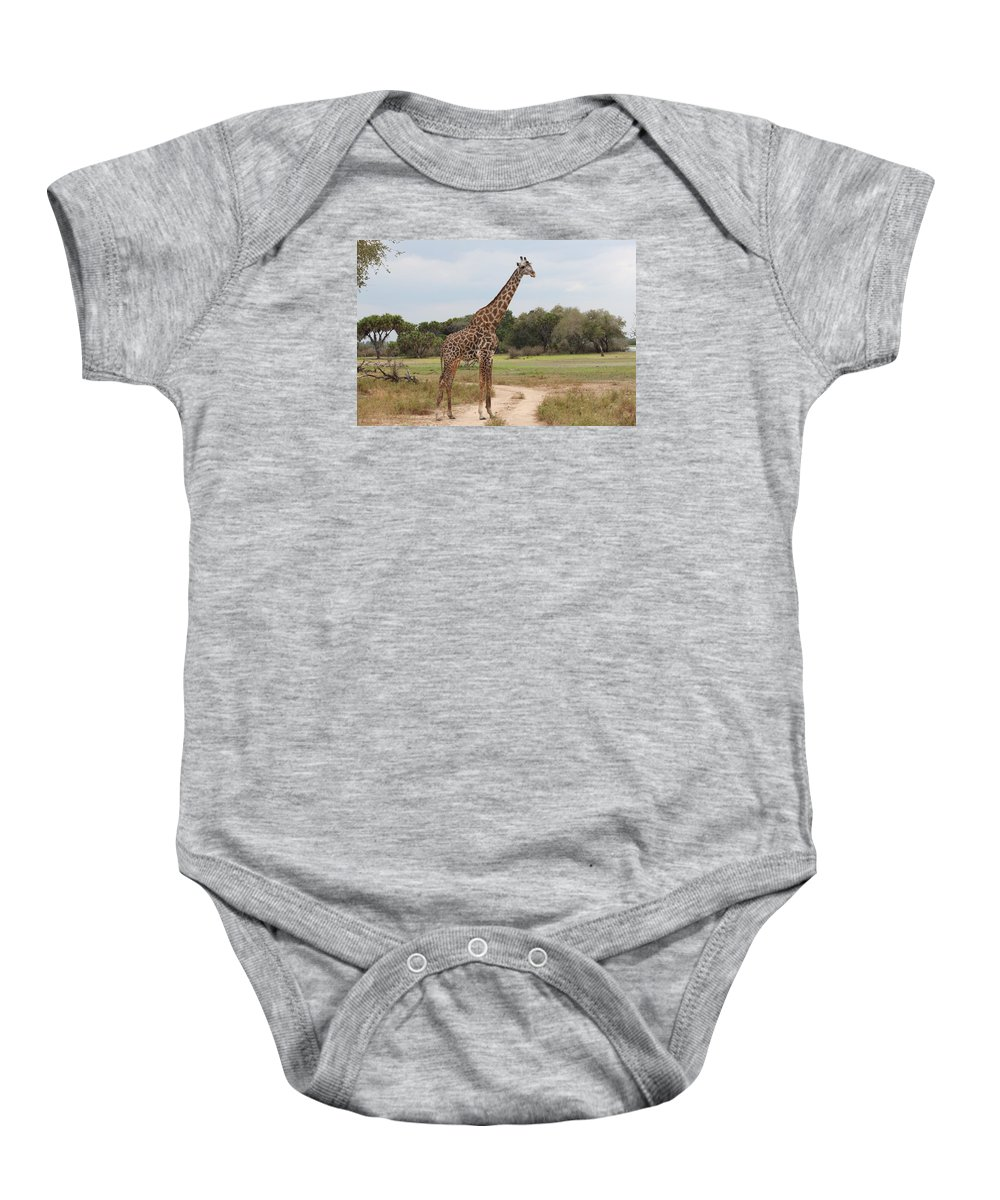 Mammal Baby Onesie featuring the photograph Giraffe by FL collection