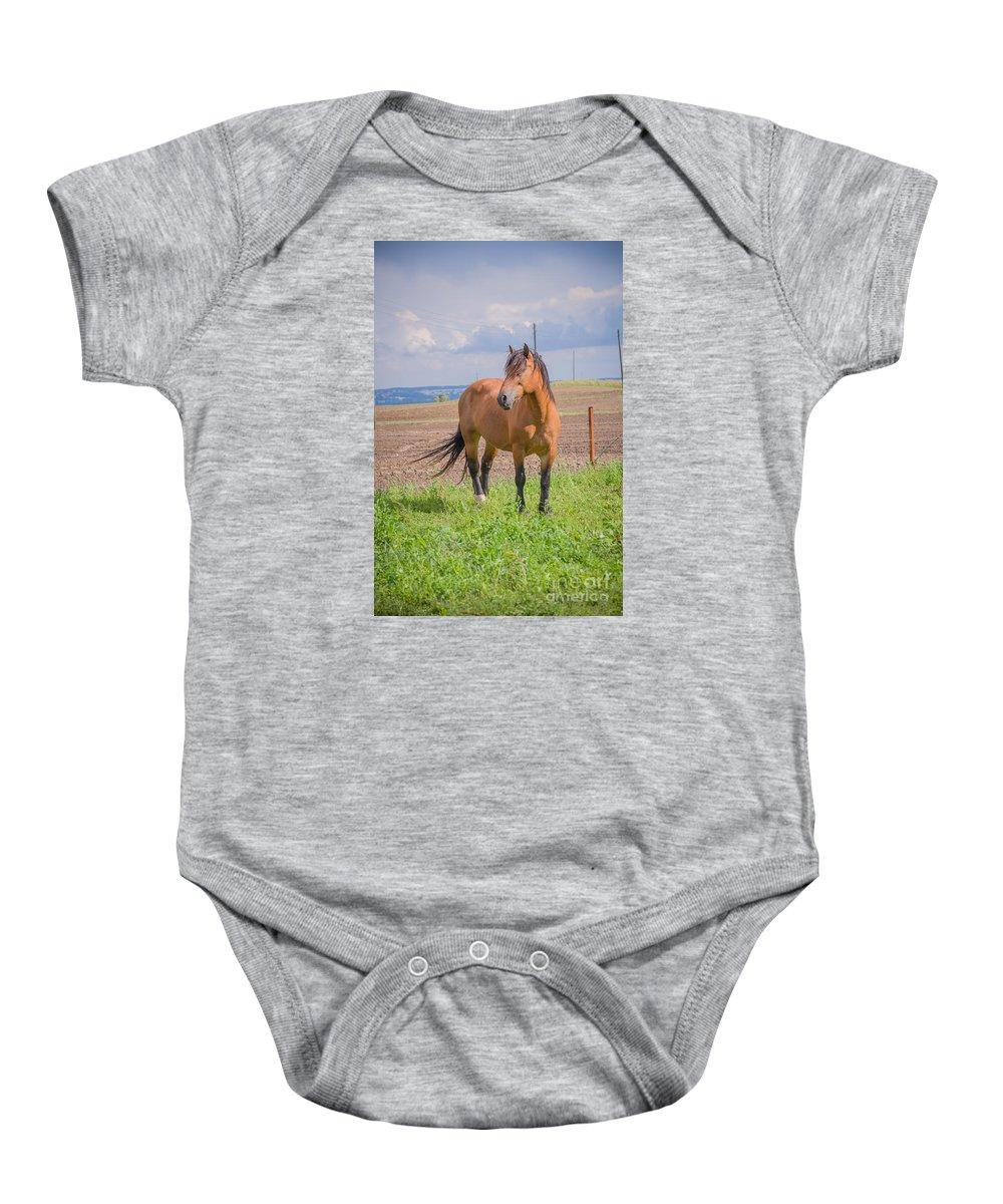 D90 Baby Onesie featuring the photograph Horse by Mariusz Talarek