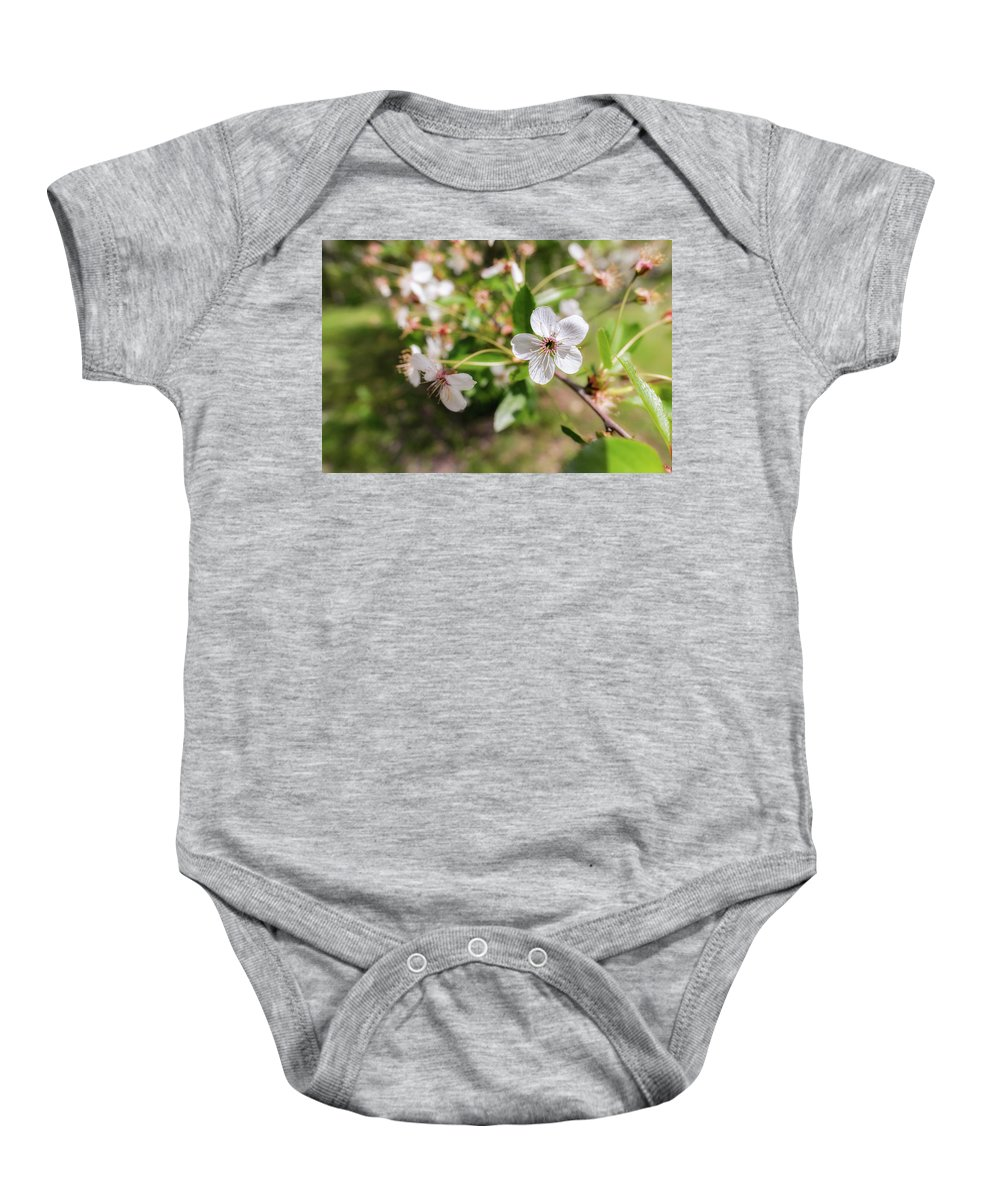 Background Baby Onesie featuring the photograph White Cherry Flower by Alain De Maximy