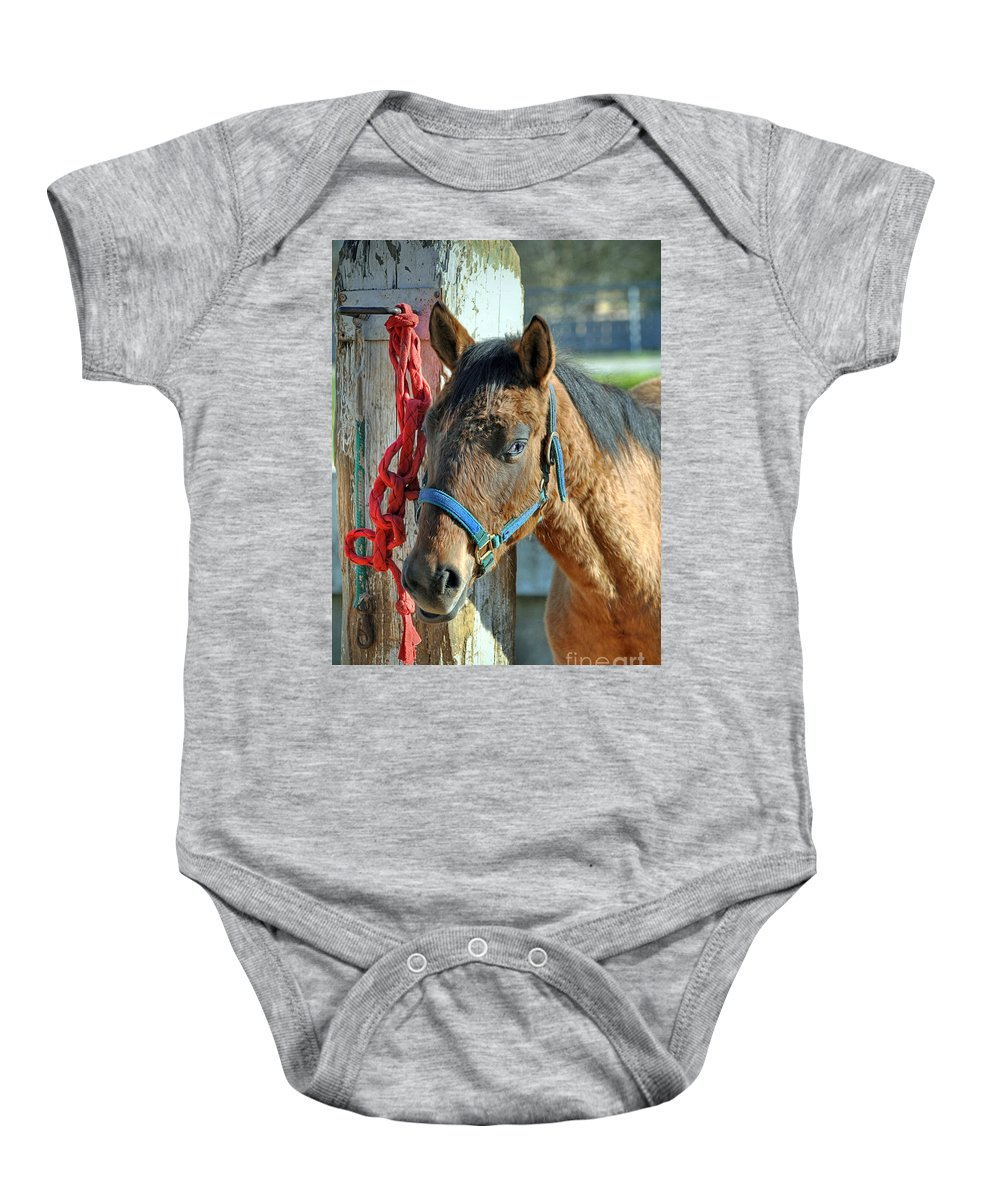 Animal Baby Onesie featuring the photograph Horse by Savannah Gibbs