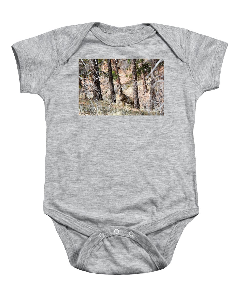 Deer Baby Onesie featuring the photograph Mule Deer In The Pike National Forest Of Colorado by Steve Krull