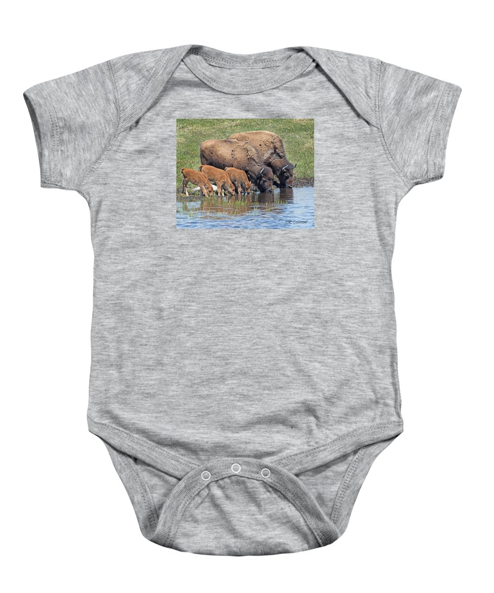 Bison Baby Onesie featuring the photograph A Convenient Stream by CR Courson