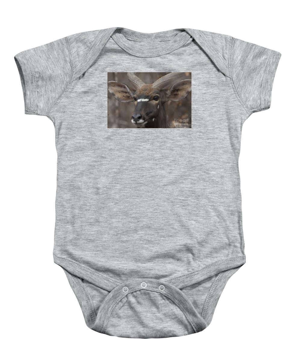 Antelope Baby Onesie featuring the photograph A Long Look by Leigh Lofgren