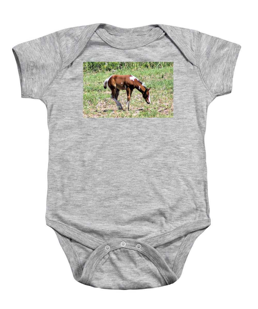 Horses Baby Onesie featuring the photograph A Young Painted Colt by Jeff Swan