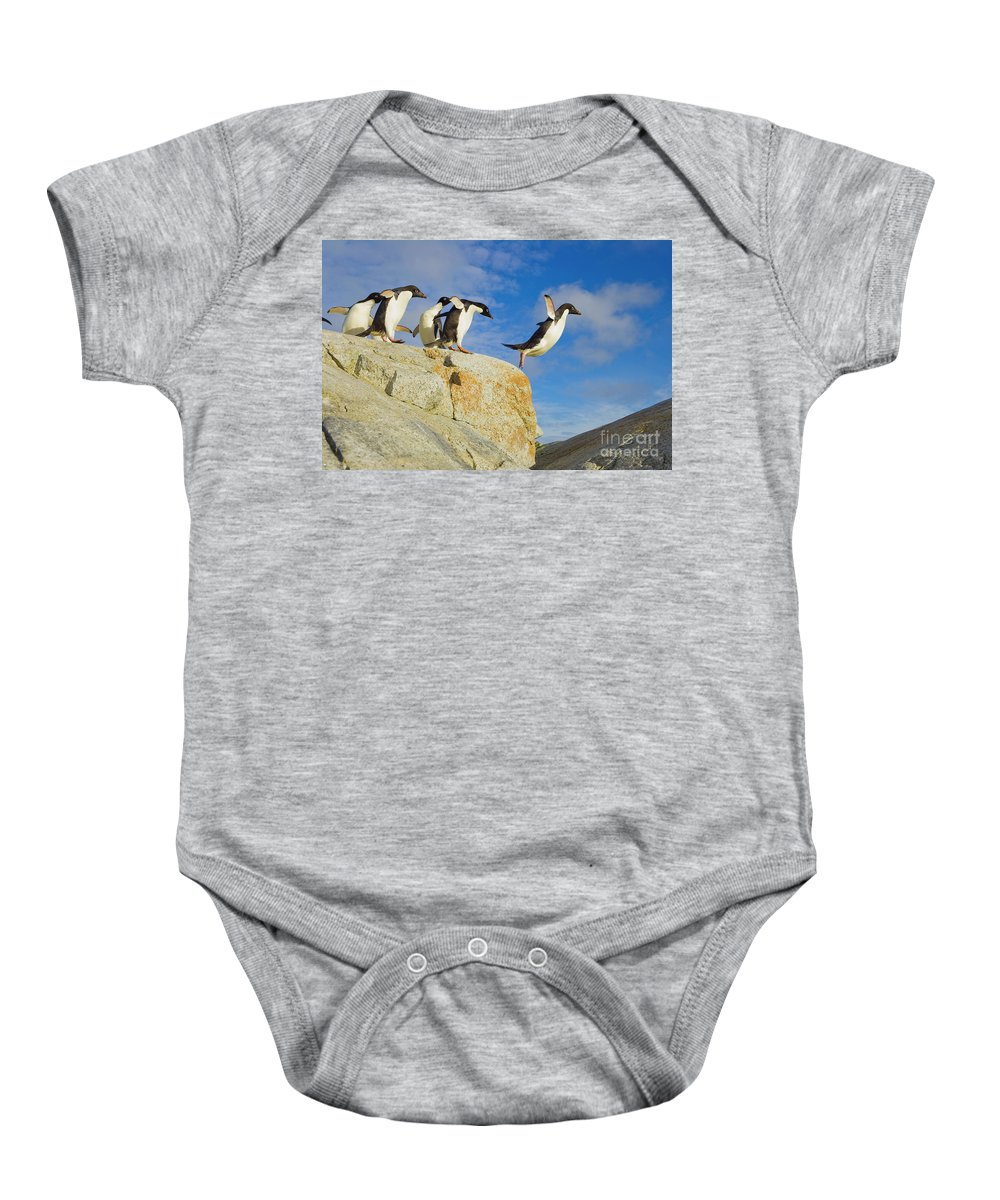 00345624 Baby Onesie featuring the photograph Adelie Penguins Jumping by Yva Momatiuk John Eastcott