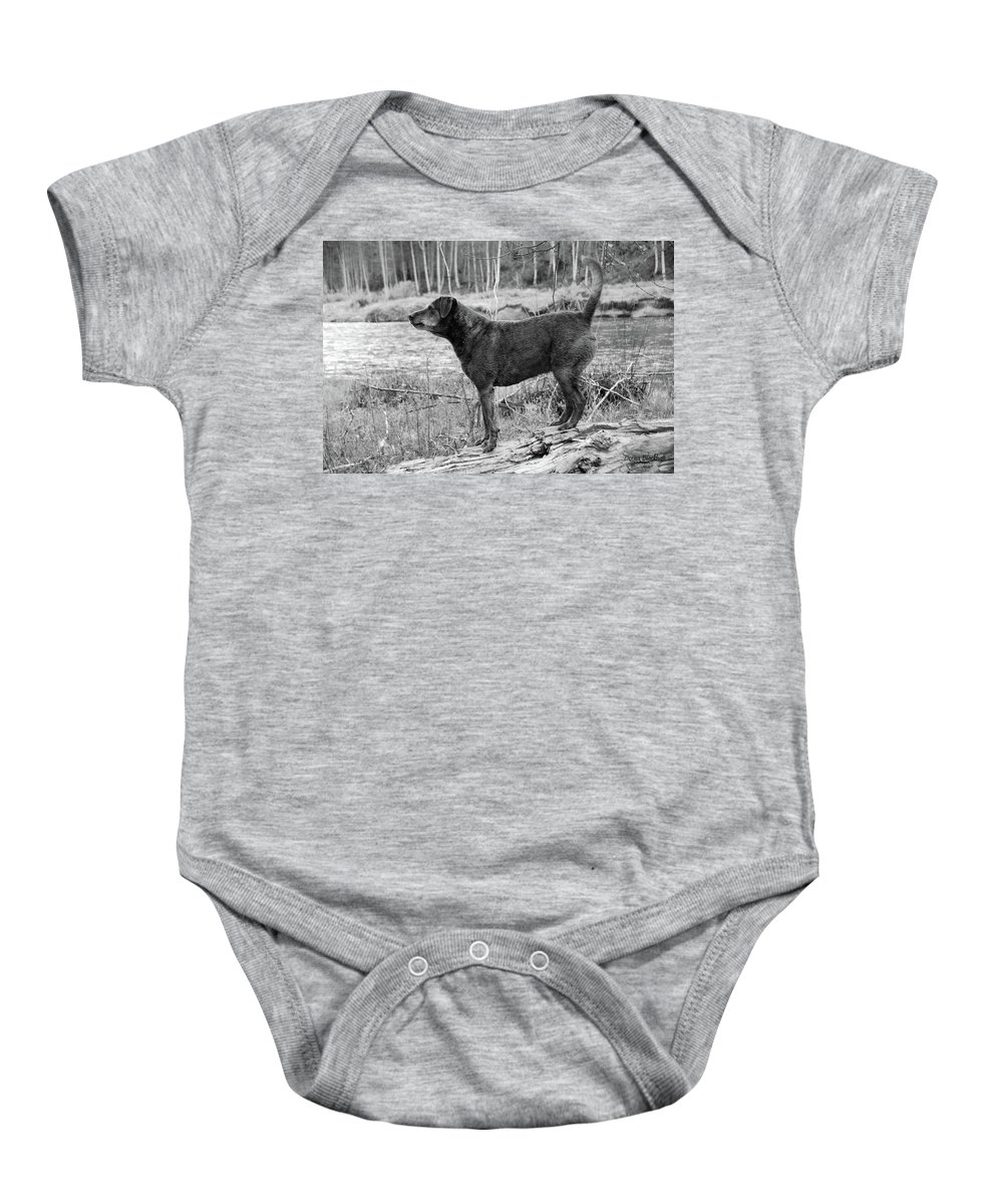 Dog Baby Onesie featuring the photograph Always Ready For Fun by Donna Blackhall