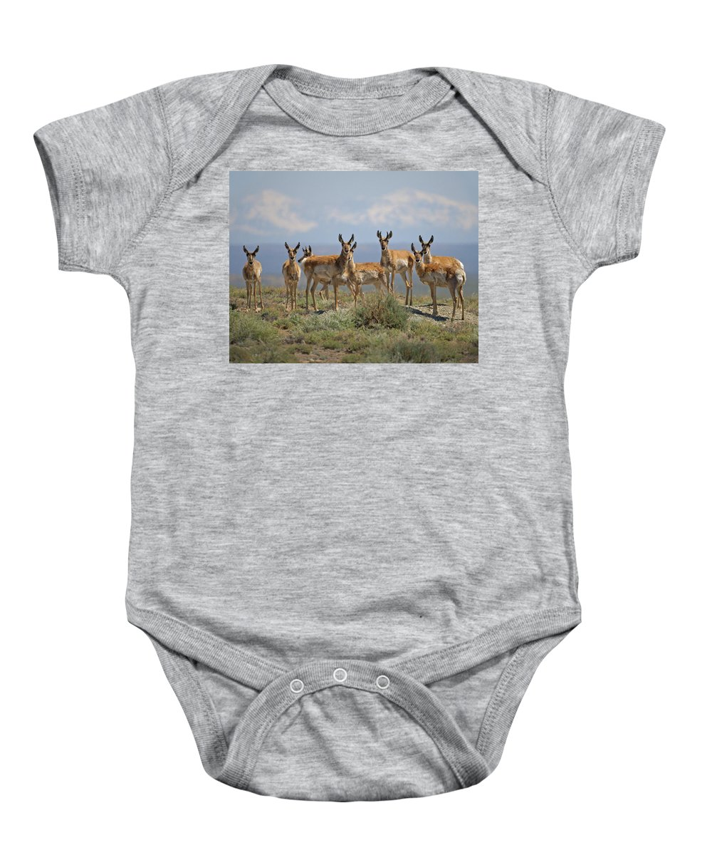 Antelope Baby Onesie featuring the photograph Antelope by Heather Coen