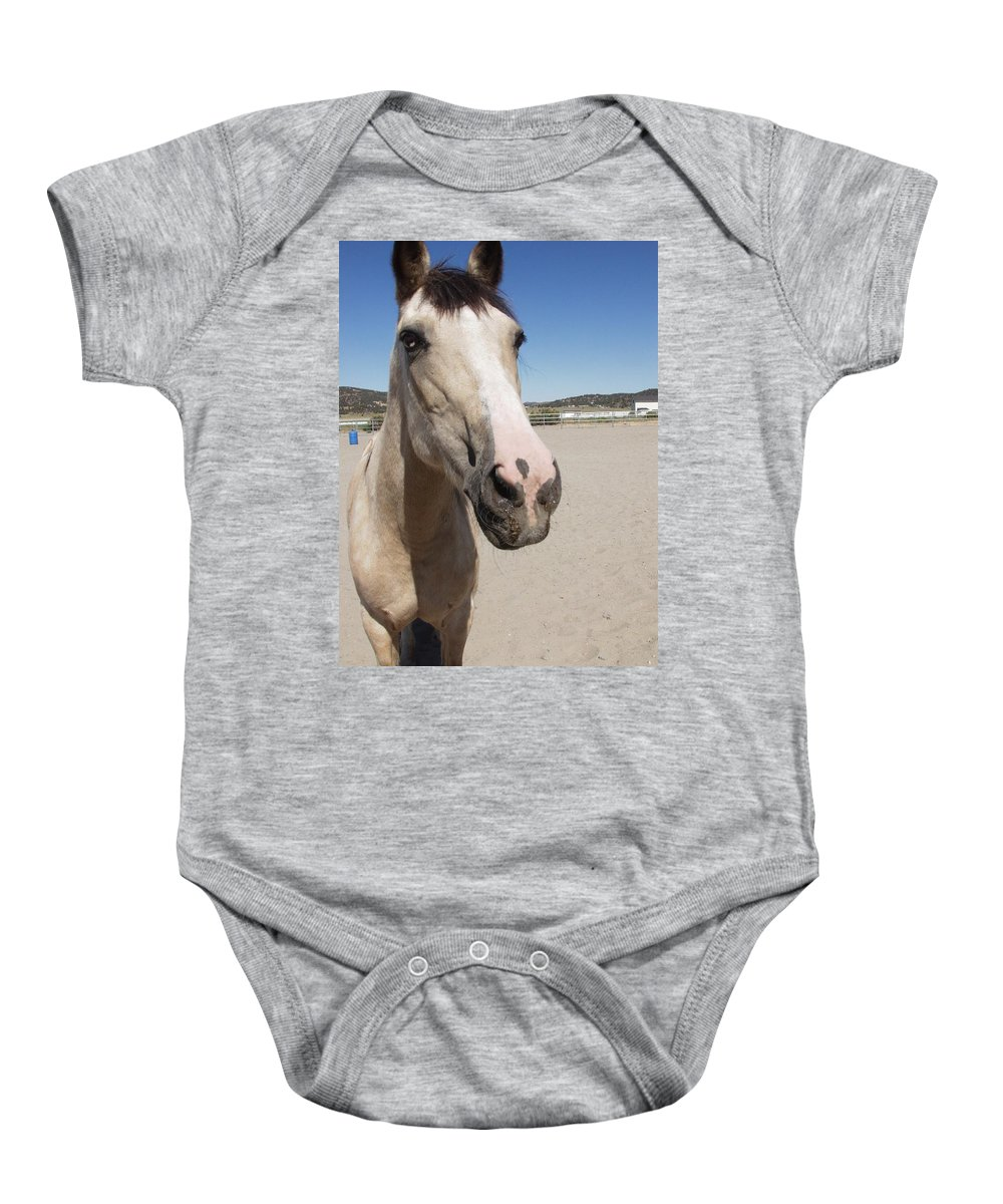 Horses Baby Onesie featuring the photograph Any Carrots by Jamey Balester