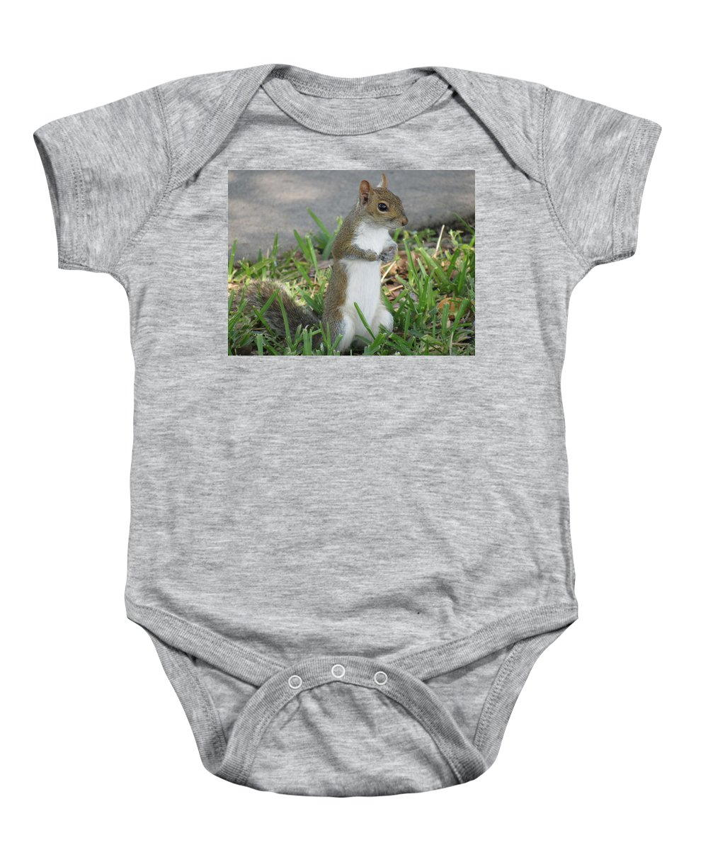 Squirrel Baby Onesie featuring the photograph Anything For Me by Daniel Hart