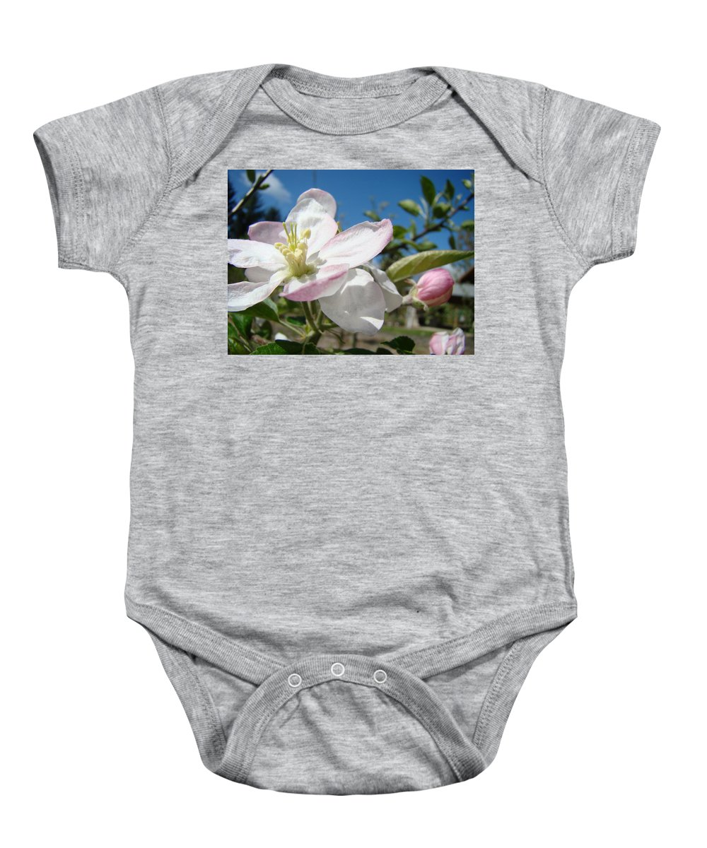 Apple Baby Onesie featuring the photograph Apple Blossom Art Prints Spring Blue Sky Baslee Troutman by Baslee Troutman