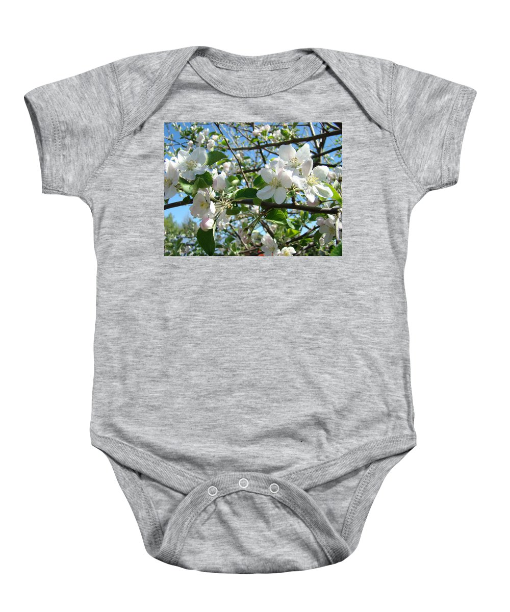 �blossoms Artwork� Baby Onesie featuring the photograph Apple Blossoms Art Prints 60 Spring Apple Tree Blossoms Blue Sky Landscape by Baslee Troutman