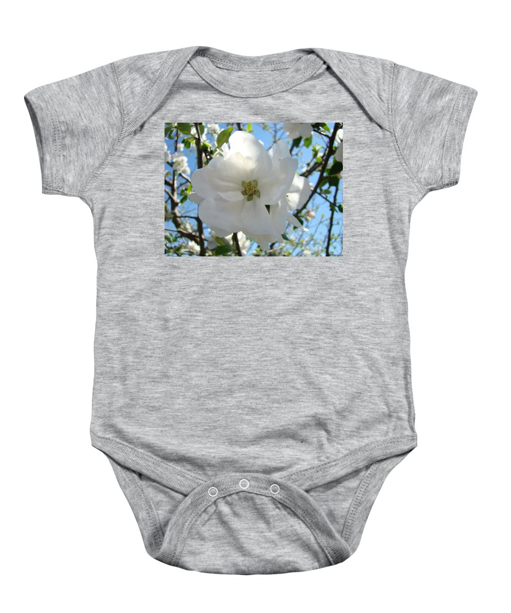 Apple Baby Onesie featuring the photograph Apple Blossoms Art Prints Canvas Spring Tree Blossom Baslee Troutman by Baslee Troutman