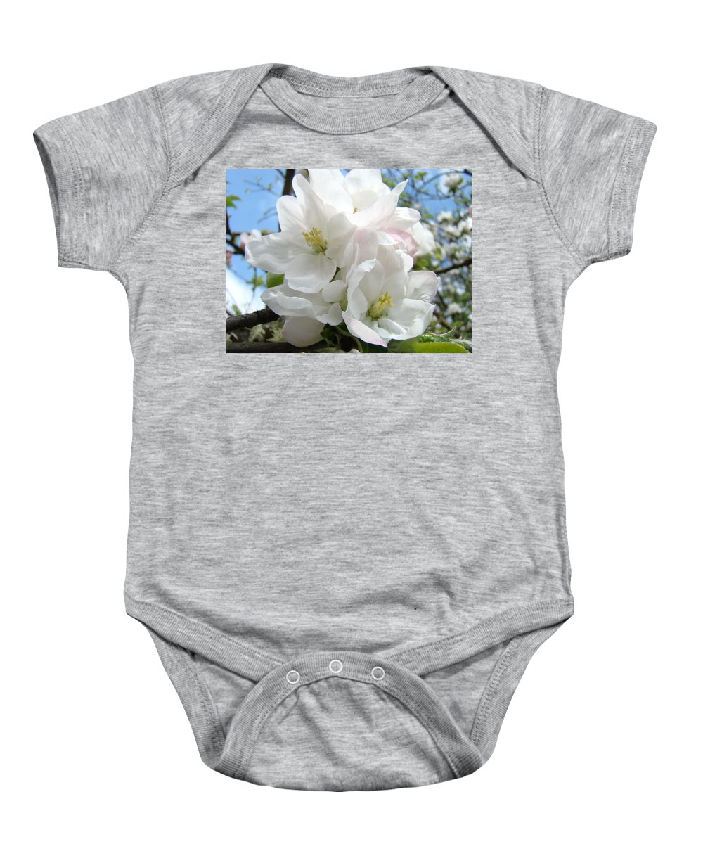 �blossoms Artwork� Baby Onesie featuring the photograph Apple Blossoms Art Prints Giclee 48 Spring Apple Tree Blossoms Blue Sky Macro Flowers by Baslee Troutman