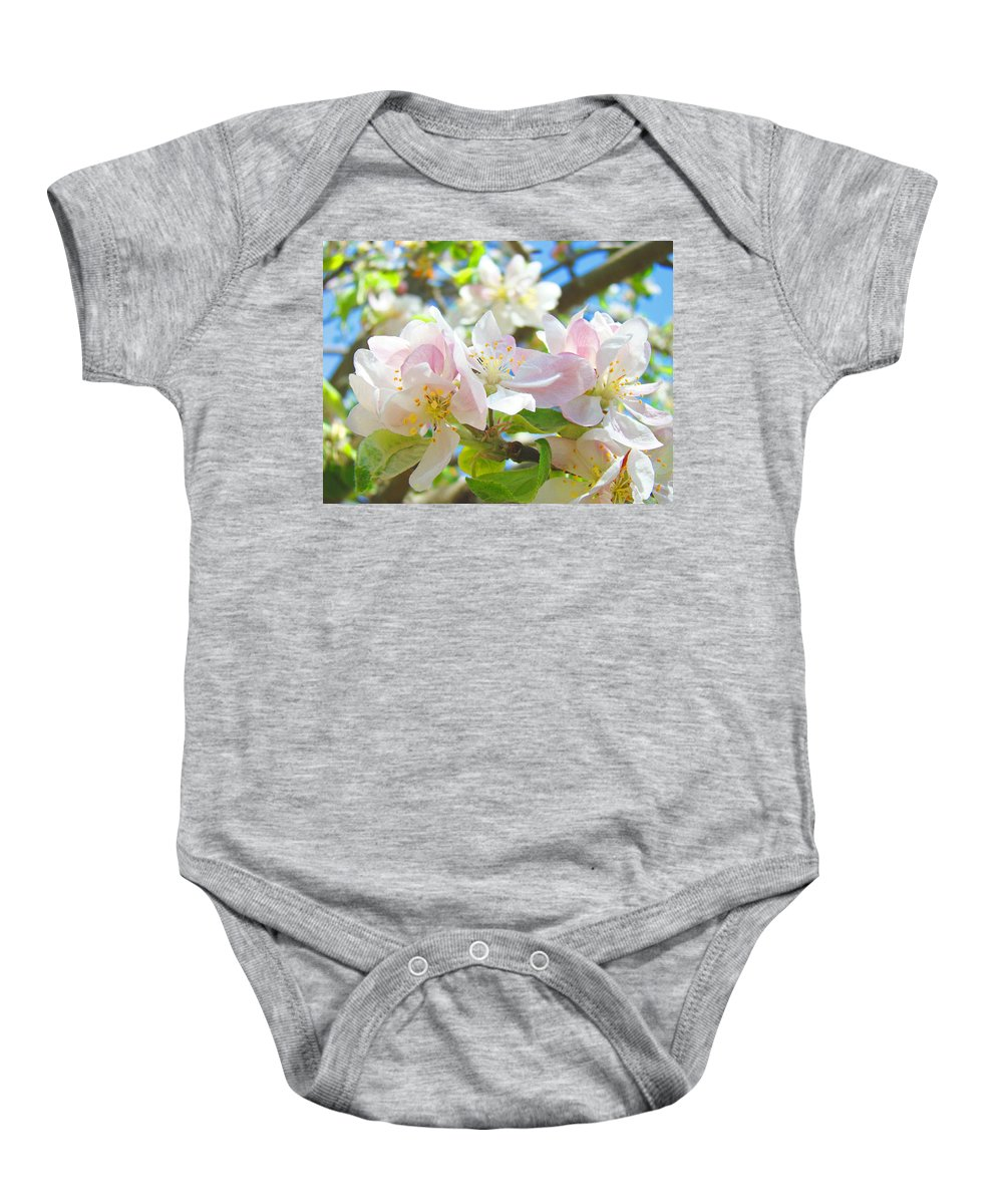 Apple Baby Onesie featuring the photograph Apple Blossoms Art Prints Spring Trees Baslee Troutman by Baslee Troutman
