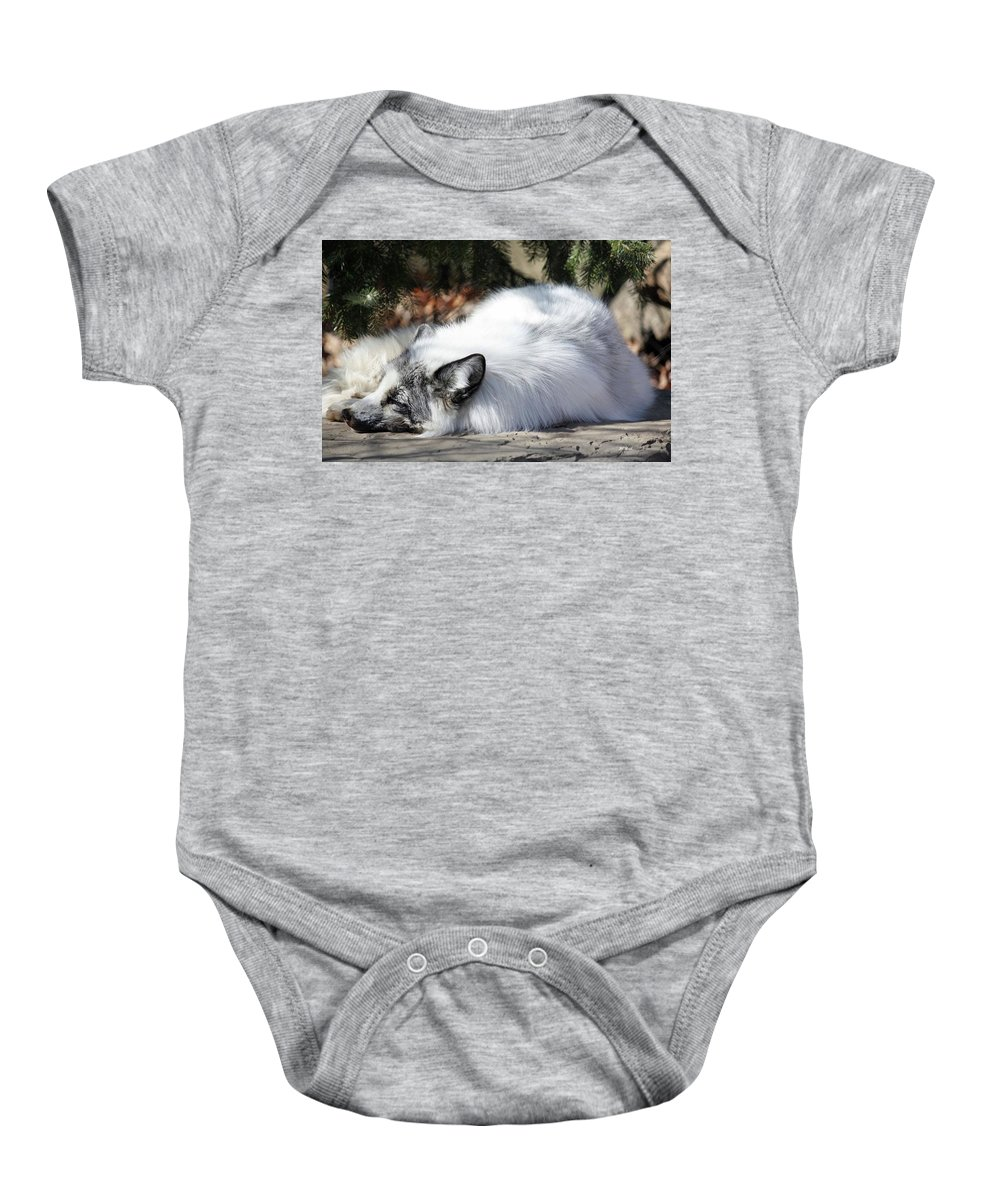 Maryland Baby Onesie featuring the photograph Arctic Fox by Ronald Reid