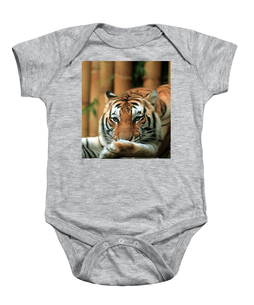Tiger Baby Onesie featuring the photograph Asian Tiger 5 by Randy Matthews