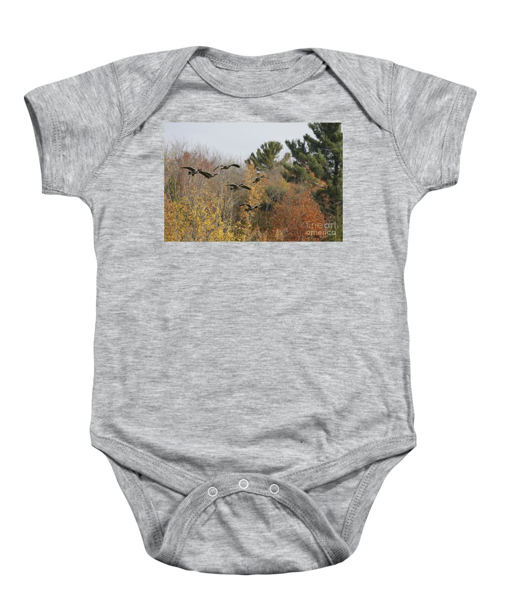 Geese Baby Onesie featuring the photograph Autumn Geese by Deborah Benoit