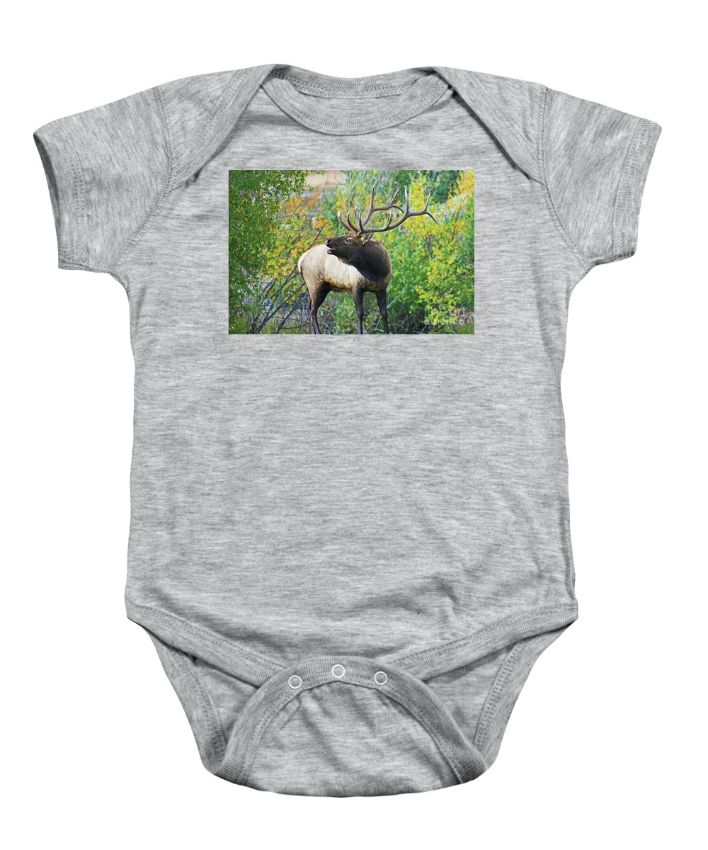 Colorado Baby Onesie featuring the photograph Autumn In Estes Park by Ty Rouse Wild Images