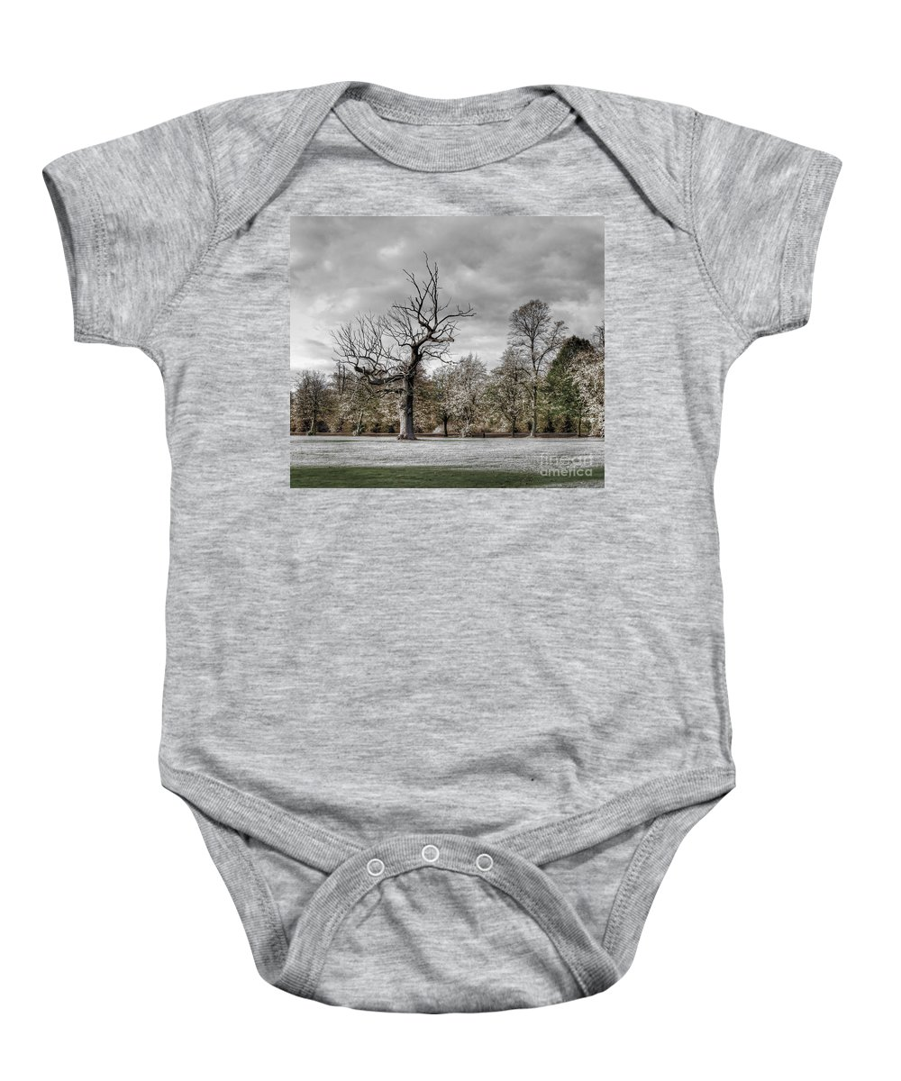 Tree Baby Onesie featuring the photograph Autumns End by Bel Menpes