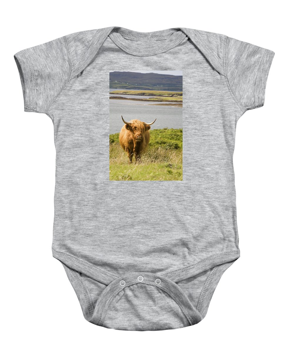 Highland Cow Baby Onesie featuring the photograph Bad Hair Day by Diane Macdonald