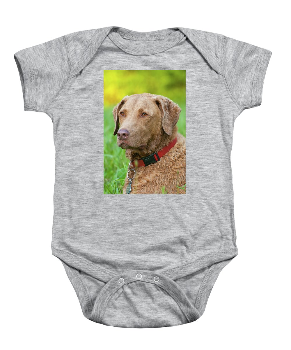 Animals Baby Onesie featuring the photograph Bailee 1149 by Guy Whiteley