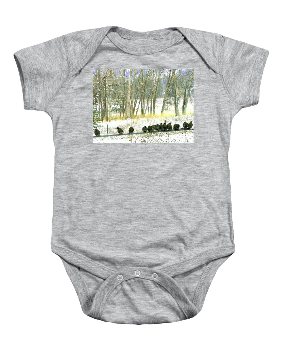 Thirteen Quail Baby Onesie featuring the photograph Bakers Dozen by Will Borden