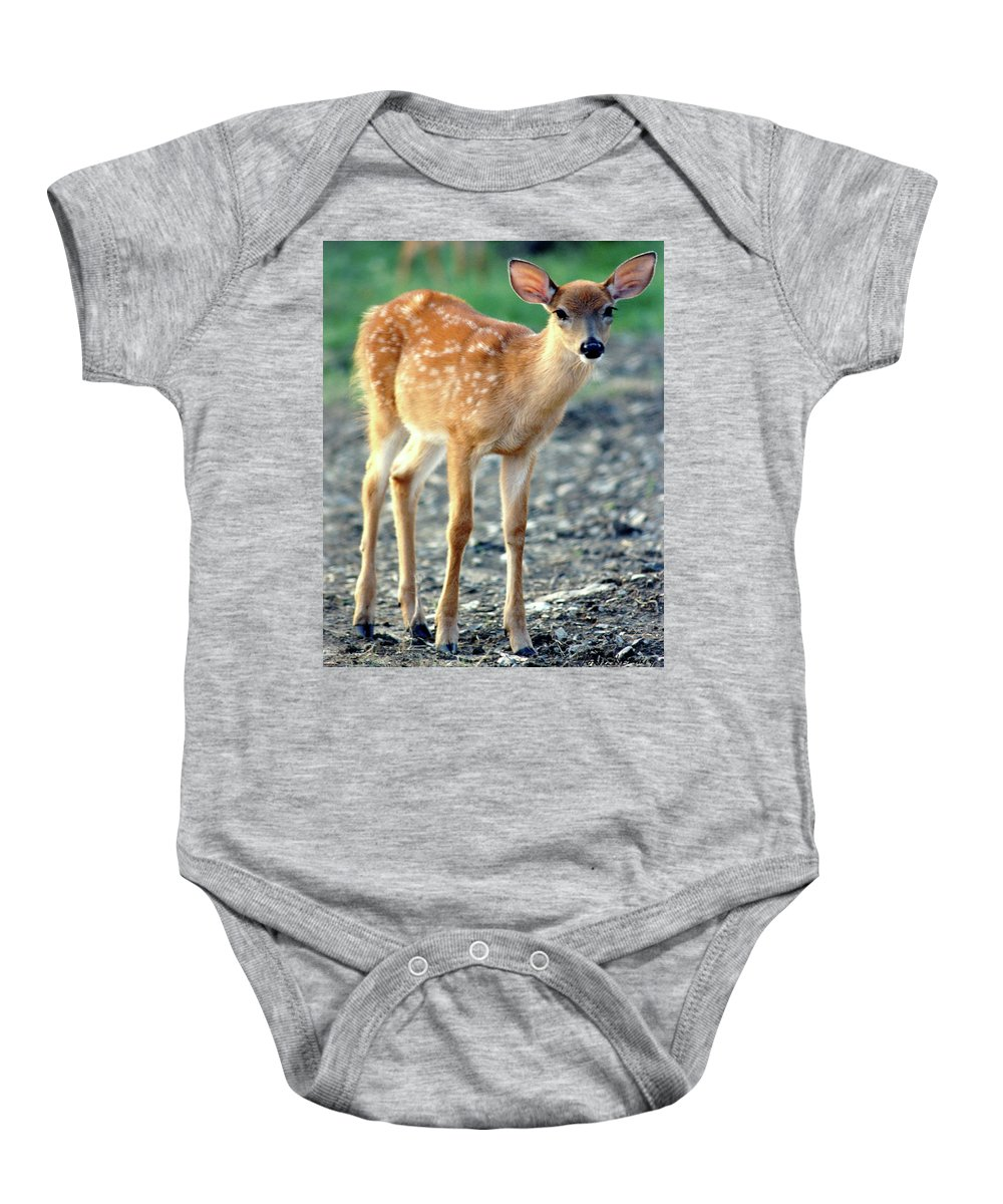 Faunagraphs Baby Onesie featuring the photograph Bambi2 by Torie Tiffany