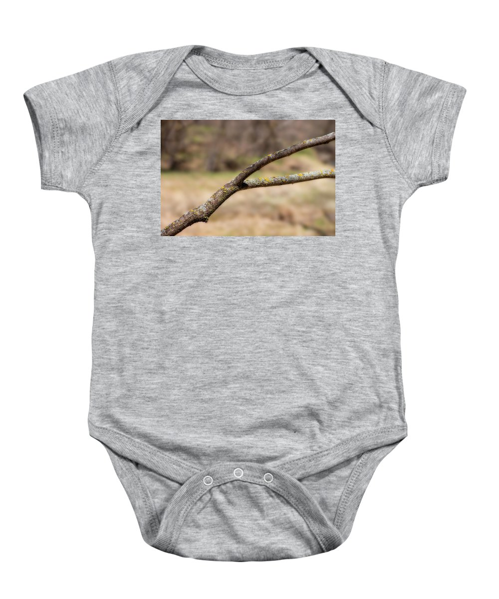 Lichen Baby Onesie featuring the photograph Bare Tree Branches In Early Spring by Donald Erickson