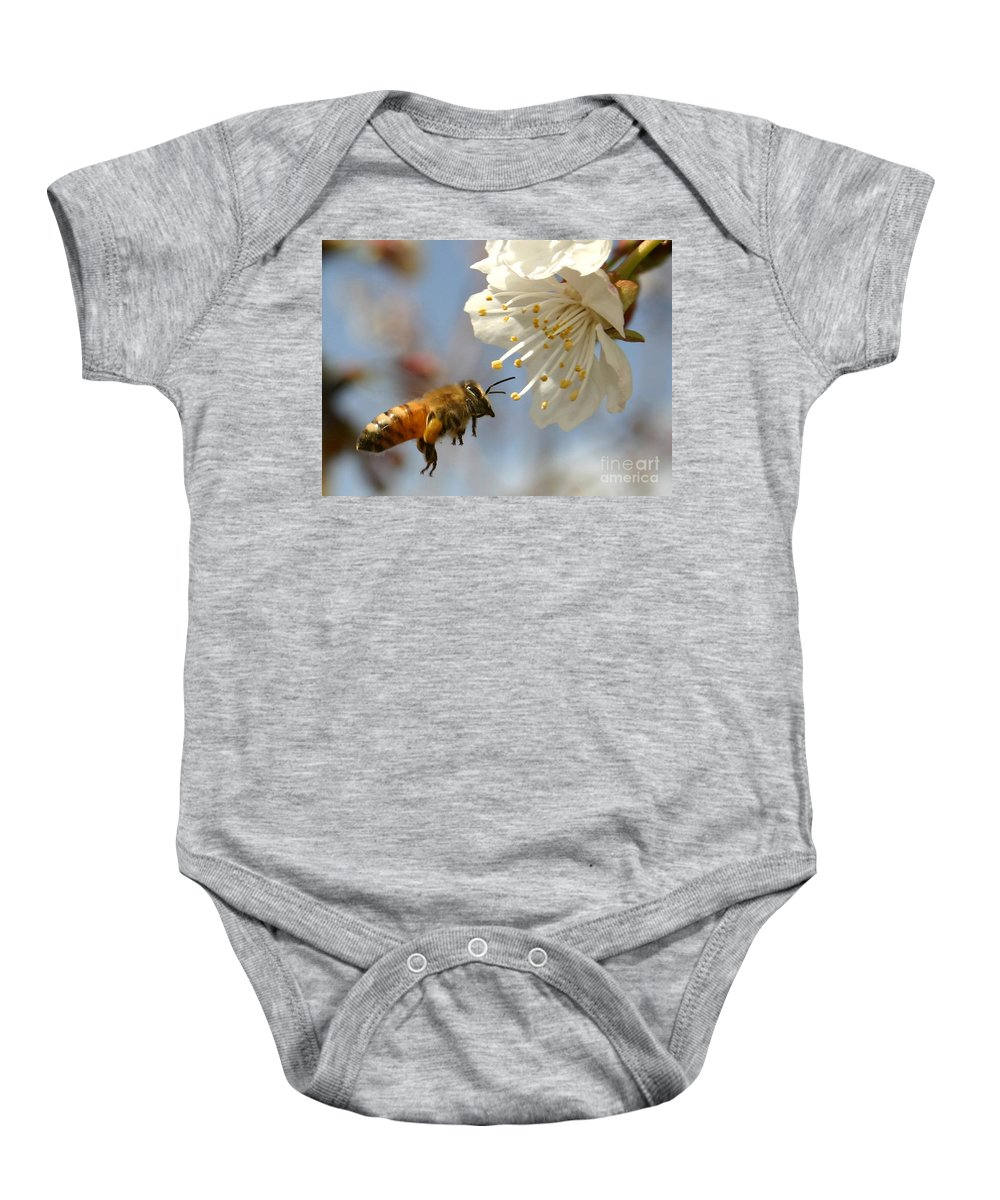 Honey Baby Onesie featuring the photograph Bee And A Blossom by Danny Yanai