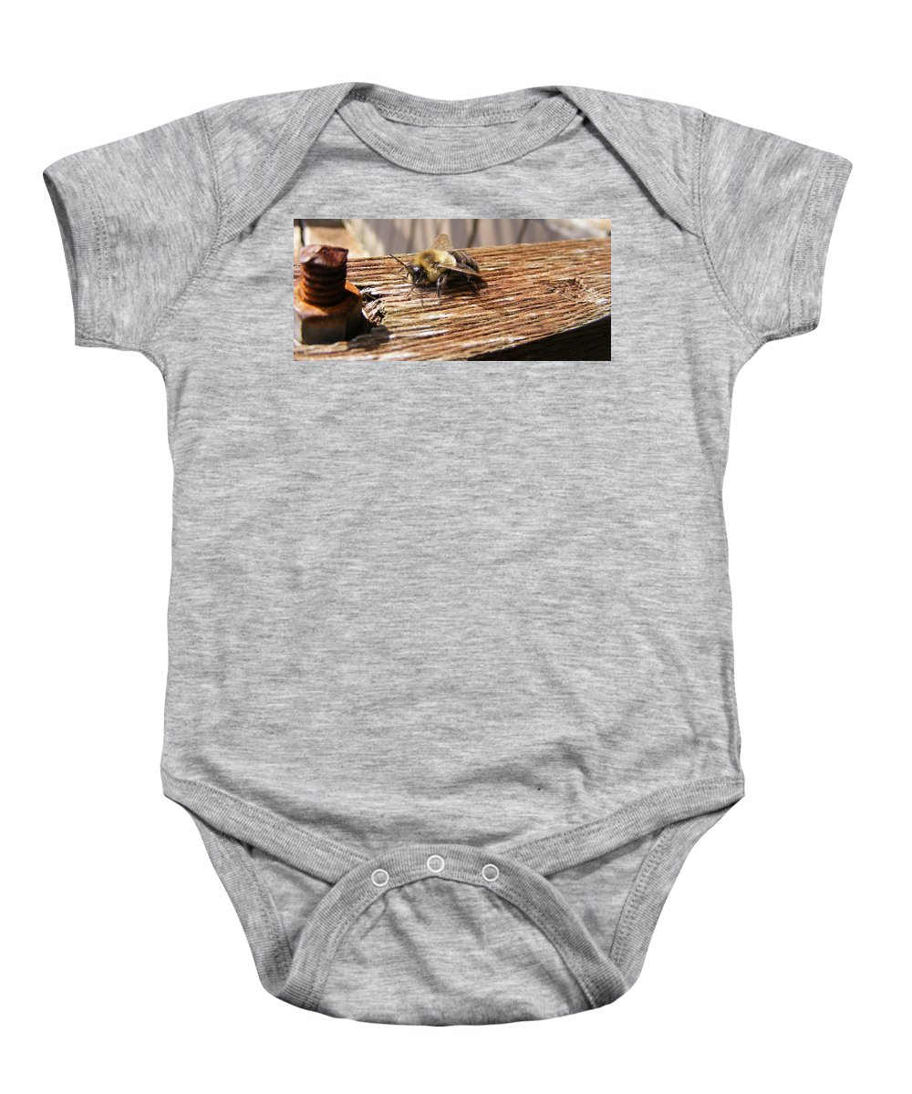 Bee Baby Onesie featuring the photograph Bee-u-tiful by Ed Smith