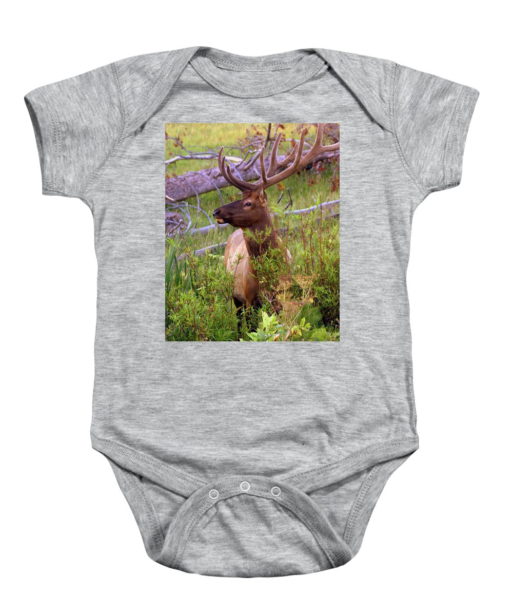 Bull Elk Baby Onesie featuring the photograph Big Bull by Marty Koch