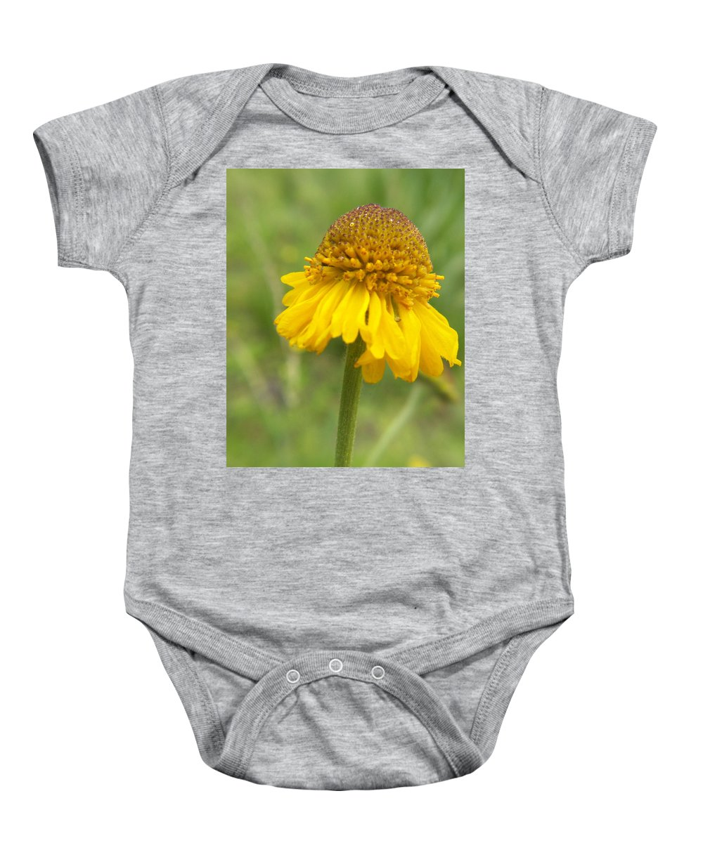 Flower Baby Onesie featuring the photograph Bigelow by Amy Fose
