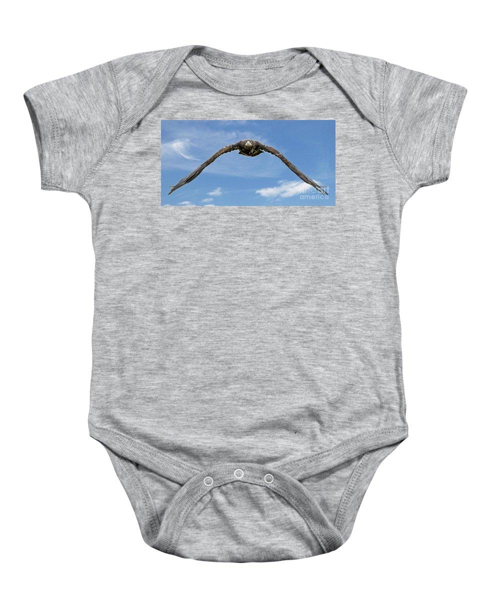 Eagle Baby Onesie featuring the photograph Birds 60 by Ben Yassa