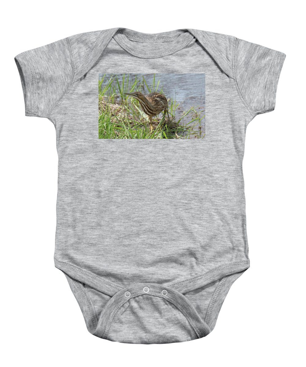 Bittern Baby Onesie featuring the photograph Bittern by Judd Nathan